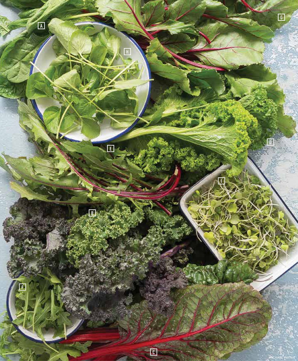 Guide to fresh leafy greens