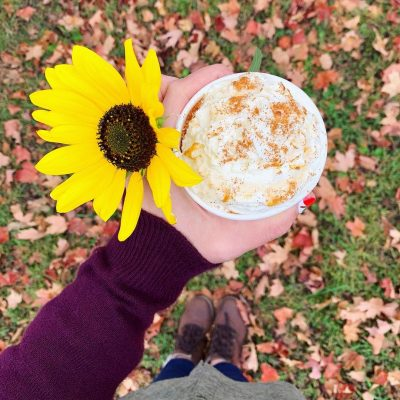 A lovely fall day for a brewtiful drink! Leaf it to us to whip up a caramel apple latte, pumpkin spice latte, hot apple cider or a 🥤pumpkin shake (made with Wedgemade coconut soft serve) without any of the additives or preservatives! Plus we've got milk for every diet🐄!