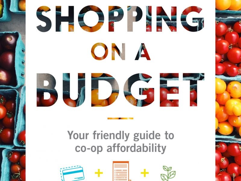 Shopping on a Budget Guide