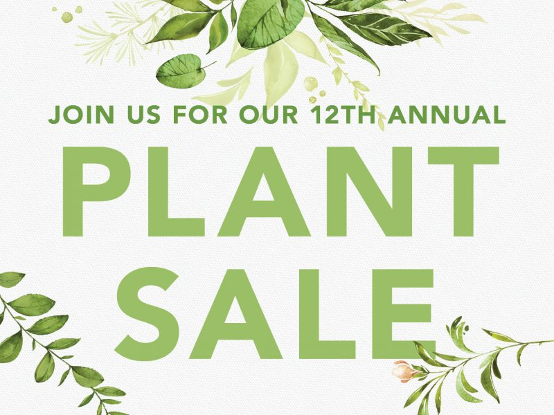 Plant Sale at Wedge and Linden Hills